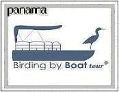Birding by Boat Tour